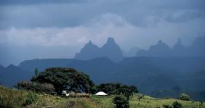 エチオピアのコーヒー産地知っていますか?有名なシダモやイルガチェフェ以外にも素晴らしい珈琲豆があ...